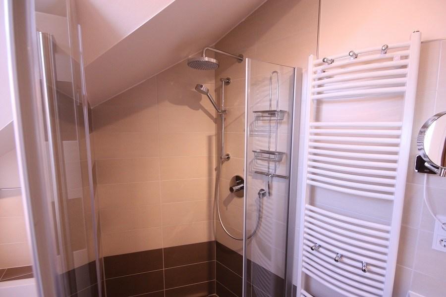 Die neue Dusche gestalteten wir mit einer zweiflügligen Glastür, passenden Edelstahlbeschlägen und einer modernen Duscharmatur.